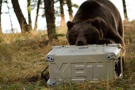 black friday yeti cooler yeti coolers sues competitors axis cups bayou ice boxes san