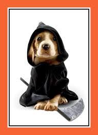 Grim Reaper Costume Puppy In Grim Reaper Costume Halloween Card Cardstore