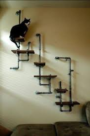 cat wall furniture pin by terry k on industrial pinterest pipes cat and cat furniture