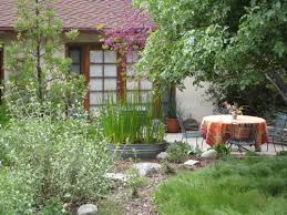 drought tolerant landscaping is part of the solution to