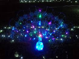 Blue Christmas Outdoor Decorations by Peacock Outdoor Christmas Decor Garden Decoration Ideas