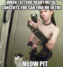 Cat Lover Meme - heavy metal cat lover memes quickmeme