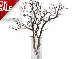 manzanita branches for sale manzanita branches from blooms and branches 10 to 7 ft