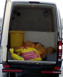 cremation procedure leading expert reveals dangers for owners choosing a pet cremation