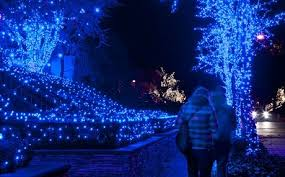 White Christmas Lights For Bedroom - blue white christmas lights best celebration day