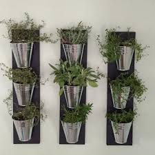 indoor herb garden wall 28 images shabby chic large wall