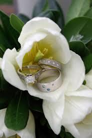 gardenia bouquet free images blossom white petal green botany flora