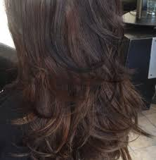 best 25 dark hair with lowlights ideas on pinterest brown hair