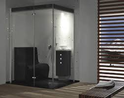 fascinating steam room bathroom designs steam showers for some