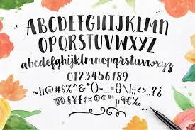 clementine script fonts creative market