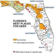Map Florida Counties by Florida Deer Hunting Forecast For 2014 Game U0026 Fish