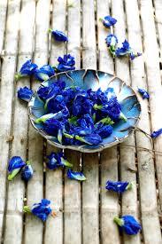 33 best bluechai reviews images on pinterest blue flowers