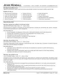 free executive resume templates executive resume templates aiditan me