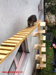 katzenleiter balkon katzenleiter balkon 100 images katzenleiter bern und umgebung