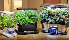 Garden Supplies Aerogarden Reviews Indoor Garden Supplies Leaffin