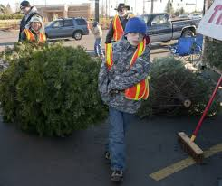 christmas tree recycling a fundraising opportunity for nonprofits