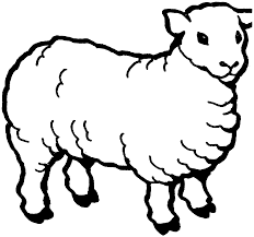 sheep coloring pages nywestierescue com
