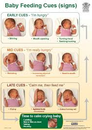 baby care tips for new parents babies and baby feeding