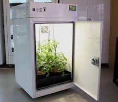 northern lights grow box how quebec could allow home growing marijuana montreal times
