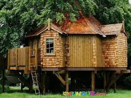 Cool Tree Houses 127 Best Tree Houses Images On Pinterest Architecture Awesome