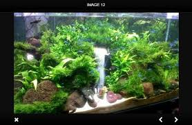 Aquarium Aquascapes Aquascape Android Apps On Google Play