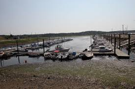 state closes all shellfish beds in wellfleet harbor no raw