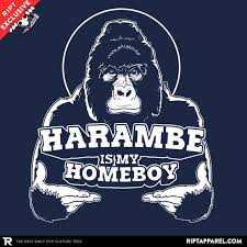 Internet Meme Shirts - 32 best internet memes images on pinterest internet memes