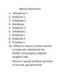 Meiosis Matching Worksheet Answers Mitosis Webquest