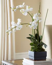 white faux orchid in black planter modern home accents