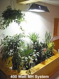Indoor Herb Garden Light Acf Indoor Plant Grow Lights U0026 Information Guide