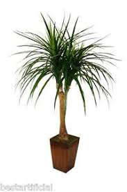 plante bureau best artificial 120cm 1 2m queue de cheval palmier tropical plante