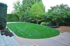 5 plant u0026 lawn health care tips for portland landscaping