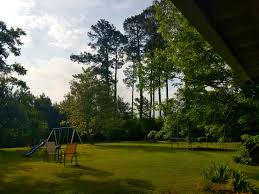 Louisiana traveling with toddlers images May 2017 simplykaraliz jpg
