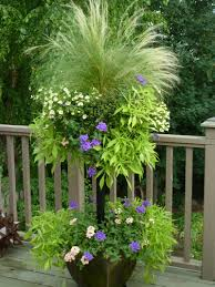 Creative Containers For Gardening Diy Side Planting Container Tutorial Learn How To Side Plant