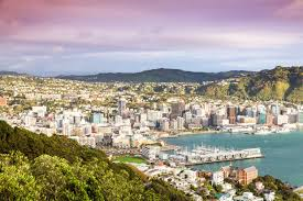 new zealand job interview this city in new zealand will fly you there for a job interview