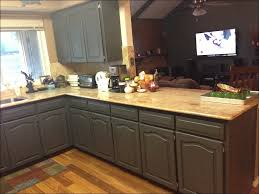 How To Paint My Kitchen Cabinets White Love The Dark Backpainted Open Cabinet And Painted The Tile How