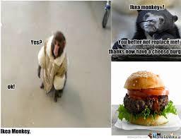Ikea Monkey Meme - ikea monkey by derpherp99 meme center