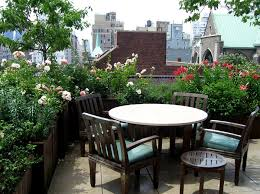 roof garden plants best terrace roof garden plants you should grow