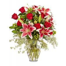 get well flowers and gifts springville boston ellicottville ny
