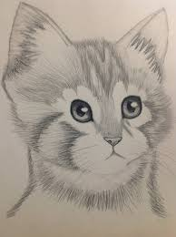 pencil sketch animals love drawing of sketch