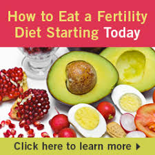 fertility diet food and infertility preganancy foods