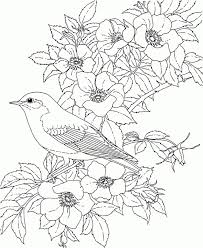 coloring pages flowers coloring pages for adults