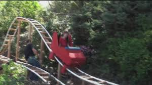 father son team build roller coaster in their backyard abc13 com