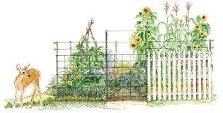 vegetable garden fence ideas rabbits pdf