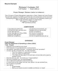 technical experience resume sample project management resume example 10 free word pdf documents