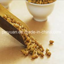 china sunflower seeds sunflower seeds manufacturers suppliers