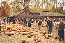 Why Fall Is The Best Season 10 Reasons Why Fall Is The Best Season In Upstate New York