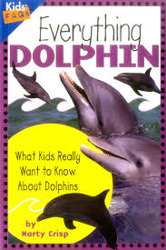 everything dolphin what kids really want to know about dolphins