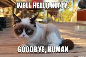 Grump Cat Meme Generator - grumpy cat pictures with captions kitty goodbye human