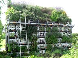 vertical gardening ideas diy home outdoor decoration